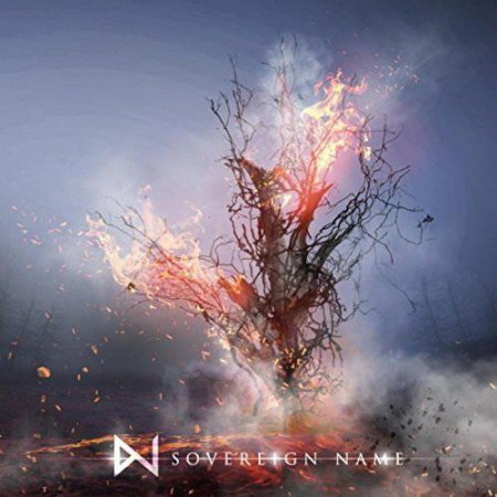 WhiteNoiz - Sovereign Name